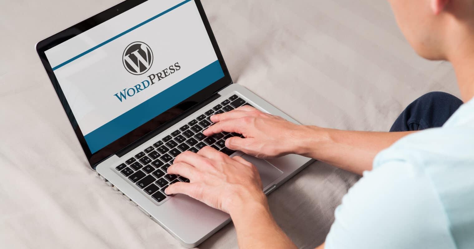 Someone using wordpress on their laptop